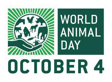 Október 4-e az Állatok világnapja.