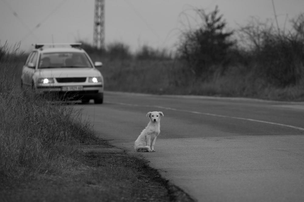 Sokadik baleset történik az elmúlt napokban