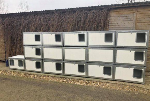 Új kutyaházak